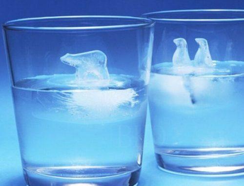 花式北極熊冰塊托盤